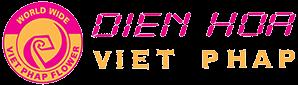 Hoa Việt Pháp