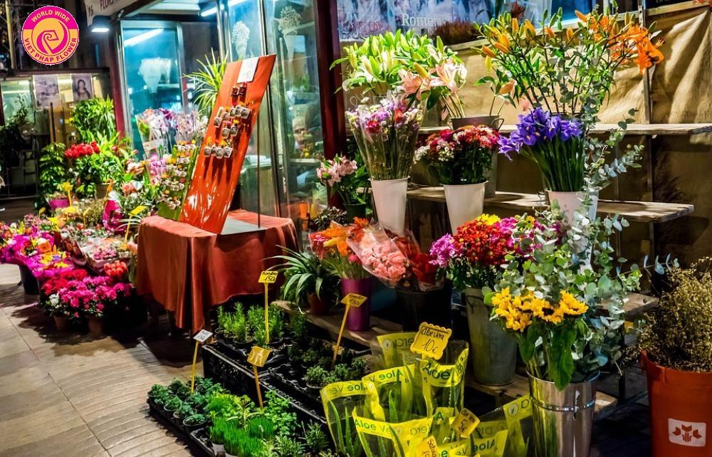 Hiện nay trên thị trường có rất nhiều shop bán hoa tươi nghệ thuật