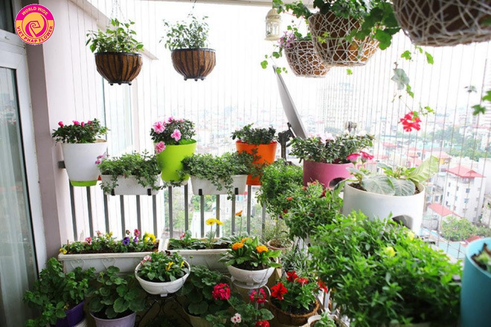 Một vườn hoa nhỏ trên ban công chung cư