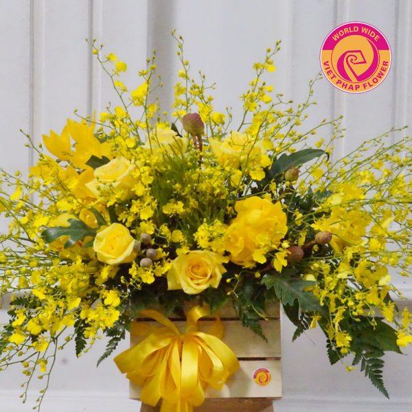 Lẵng hoa lan vũ nữ kết hợp tinh tế với hoa hồng vàng