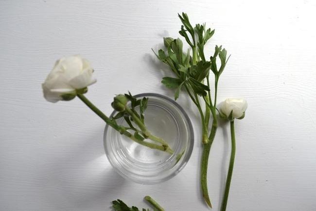 Hoa đậu ngọt cắt đủ thấp để cho vào bình. Thêm chút hoa mao lương tập trung ở giữa bình.