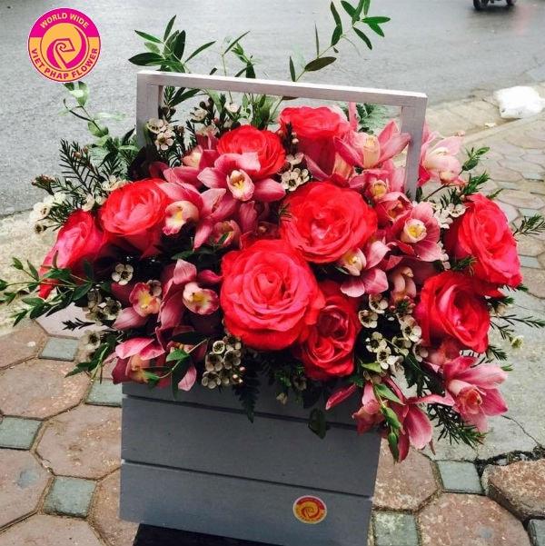 hoa tặng ngày nhà giáo