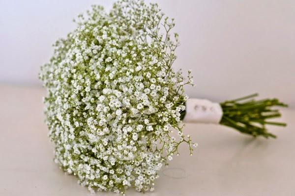 Top 6 loại hoa đẹp cho ngày kỷ yếu đáng nhớ