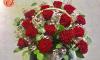 Hoa hồng Ecuador – Loài hoa kiêu sa cuốn hút phái nữ