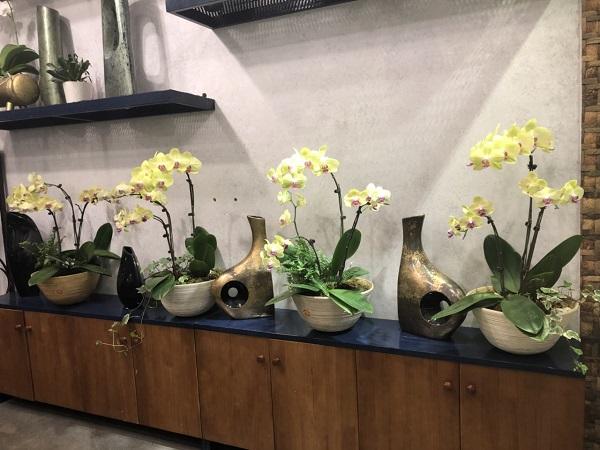 Tre, gốm và những vật dụng thuần Việt trong nghệ thuật cắm hoa sang - sành