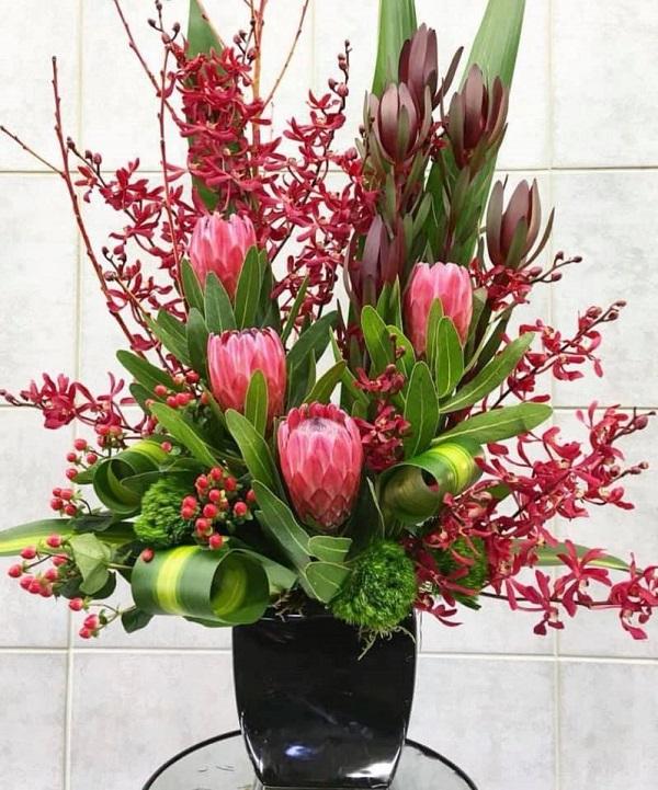 Hoa thảo đường Protea Venus: Vẻ đẹp gai góc của loài hoa Nam Phi