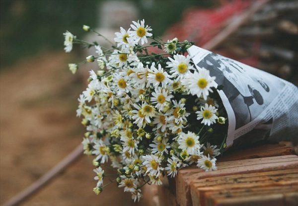 Tháng Mười gọi hương sắc heo may