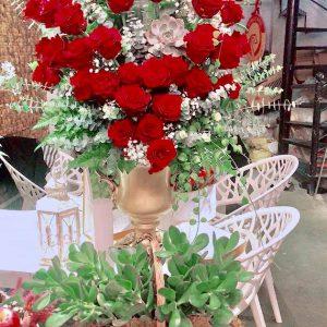 Hồng tình yêu Valentine