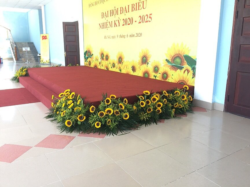 hoa bục thang hội nghị