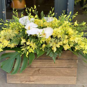 hoa hội nghị