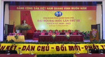 Thảm hoa tươi thắm đón chào đại hội đảng bộ  Khối DNTW