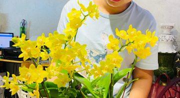 Cây ra hoa nhà thêm lộc