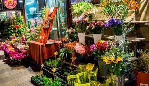 Làm thế nào để giữ hoa tươi lâu trong dịp Tết?