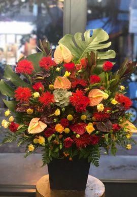Hoa để bàn VPHDB200820160