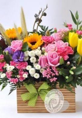 Hoa để bàn VPHDB250620100