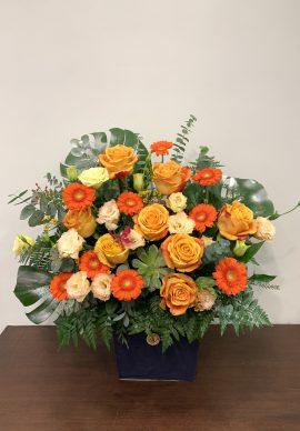 Hoa để bàn đẹp VPLB03112080