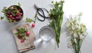 Bí kíp dùng củ cải đỏ làm điểm nhấn cho lọ hoa độc đáo, xinh xắn