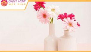 Bí quyết cắm hoa đồng tiền giữ cho hoa tươi lâu nhất