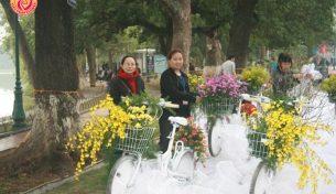 Điện Hoa Việt Pháp tham gia lễ hội Phố hoa kỷ niệm 1000 năm Thăng Long Hà Nội