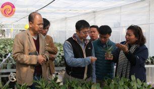 Điện hoa Việt Pháp tổ chức hội thảo chuyển giao công nghệ với chuyên gia  Đài Loan