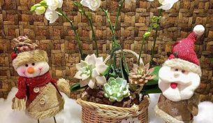 Gợi ý những lẵng hoa độc đáo làm quà tặng nhân dịp Noel