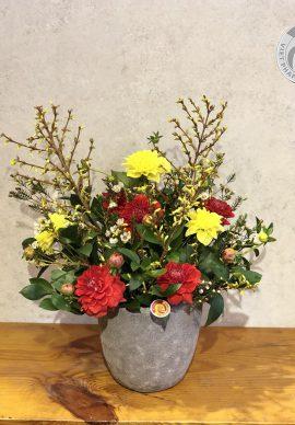 Hoa nghênh xuân mẫu 1