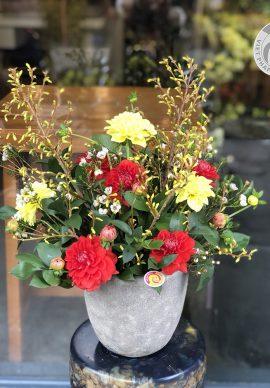 Hoa nghênh xuân mẫu 3