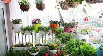 Thiết kế sân vườn hoa nhỏ đẹp mang đến không gian xanh tuyệt vời